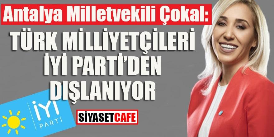 Antalya Milletvekili Çokal: Türk milliyetçileri İyi Parti'den dışlanıyor