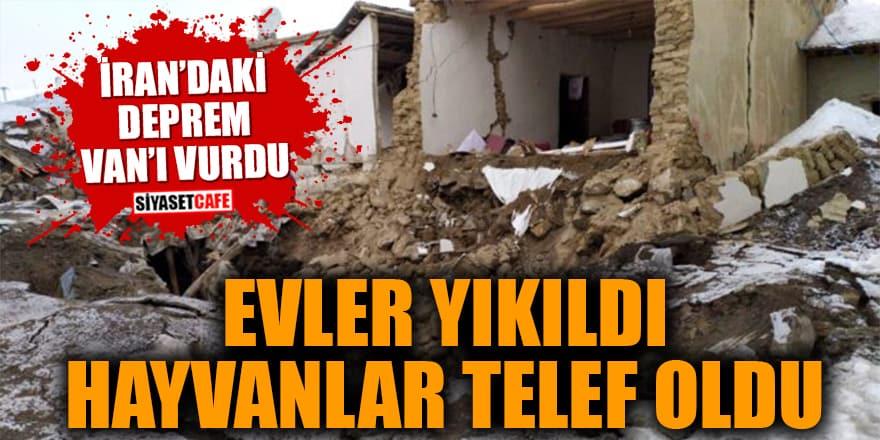 İran'daki deprem Van'ı vurdu! Evler yıkıldı, hayvanlar telef oldu