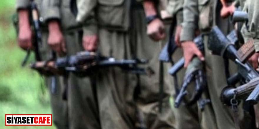 FETÖ, PKK ve DHKP-C'li teröristlere yardım etti
