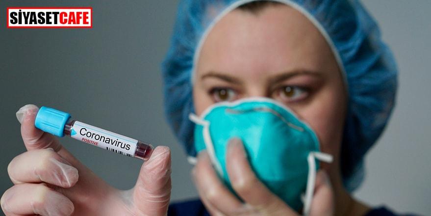 Koronavirüsün sıçramadığı son komşumuz Suriye'de de ilk vaka tespit edildi