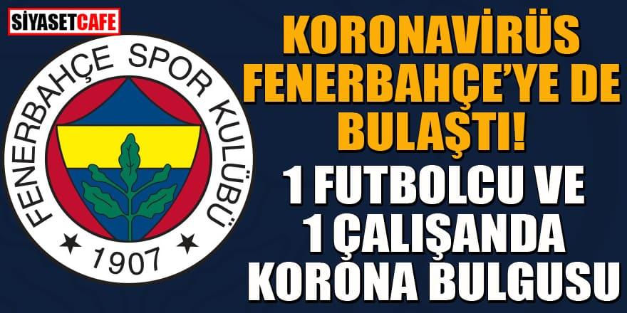 Fenerbahçe'ye büyük şok! 1 futbolcu ve 1 çalışanda koronavirüs bulgusu çıktı