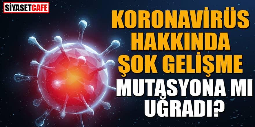 Koronavirüsle ilgili şoke eden gerçek: Yüzde 40 mutasyonu var