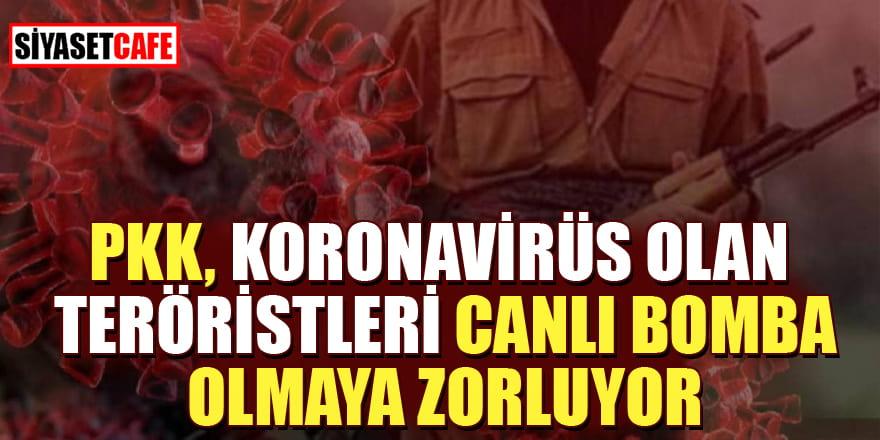 PKK, korona belirtisi gösteren teröristleri canlı bomba olması için zorluyor!