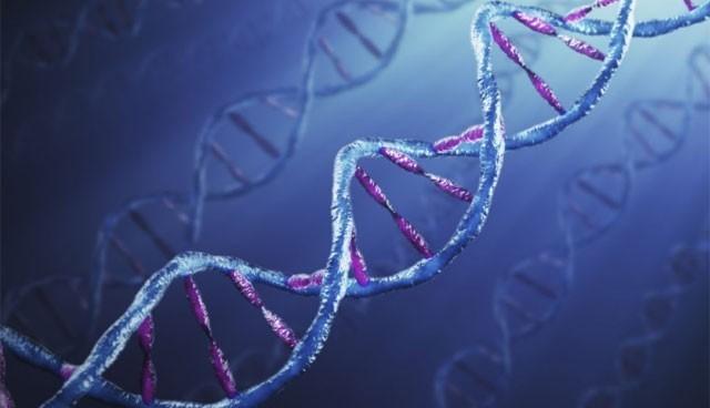 Türklerin genetik şifresi çözüldü