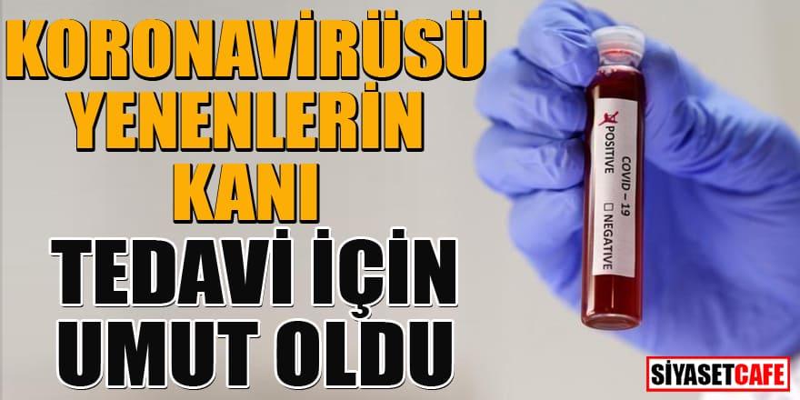 Koronavirüsü yenenlerin kanı, tedavi bulmada kullanılacak