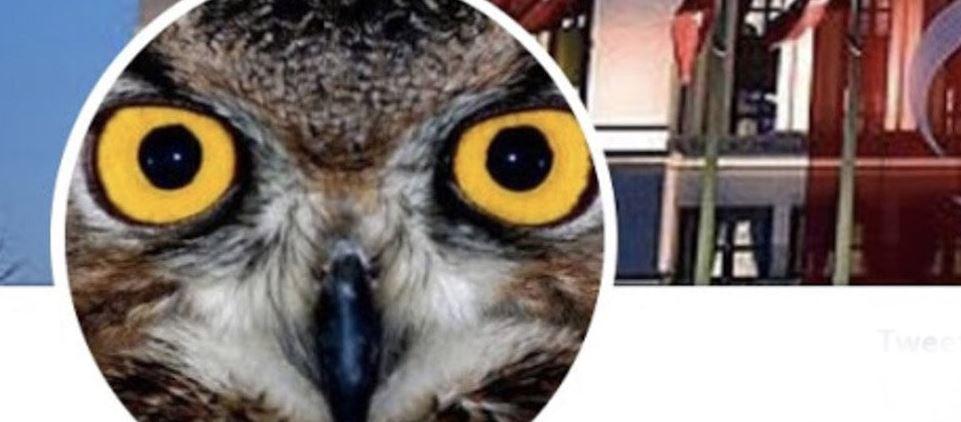 "Son dakika: Kripto Fetöcü ""Ankara Kuşu"" yakalandı"