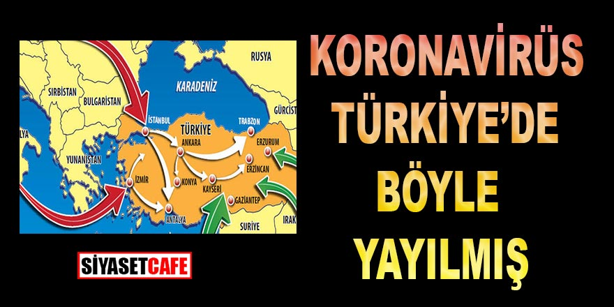 Korona virüsü Türkiye'ye bakın nasıl yayılmış; Koronavirüsün Türkiye'ye yayılma hikayesi