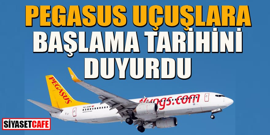 Pegasus Genel Müdürü, uçuşların başlaması hakkında tarih verdi!
