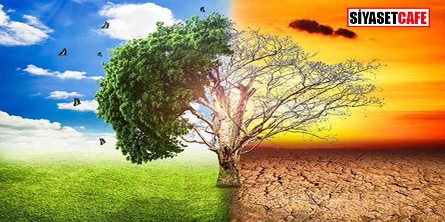 Türkiye, küresel iklim değişikliğini ne kadar önemsiyor?