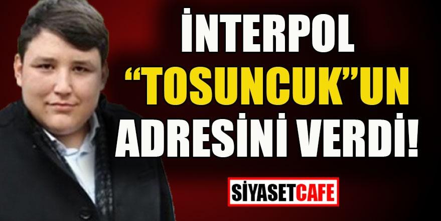 İnterpol Tosuncuk Mehmet Aydın'ın adresini verdi