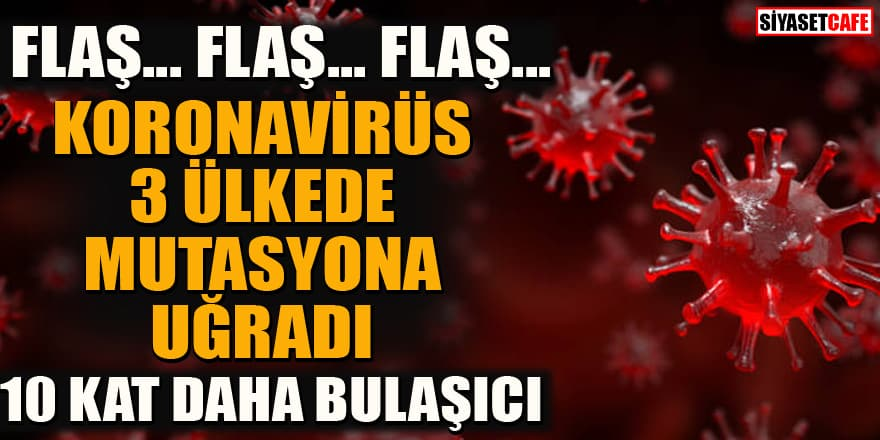 Flaş araştırma: Korona 3 ülkede mutasyona uğradı! 4 kat daha ölümcül