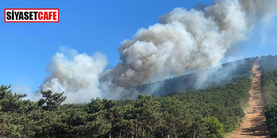 Son dakika.. Kayışdağı'nda orman yangını