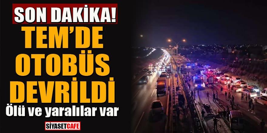 TEM Otoyolu'nda korkunç kaza! Otobüs devrildi! Ölü ve yaralılar var