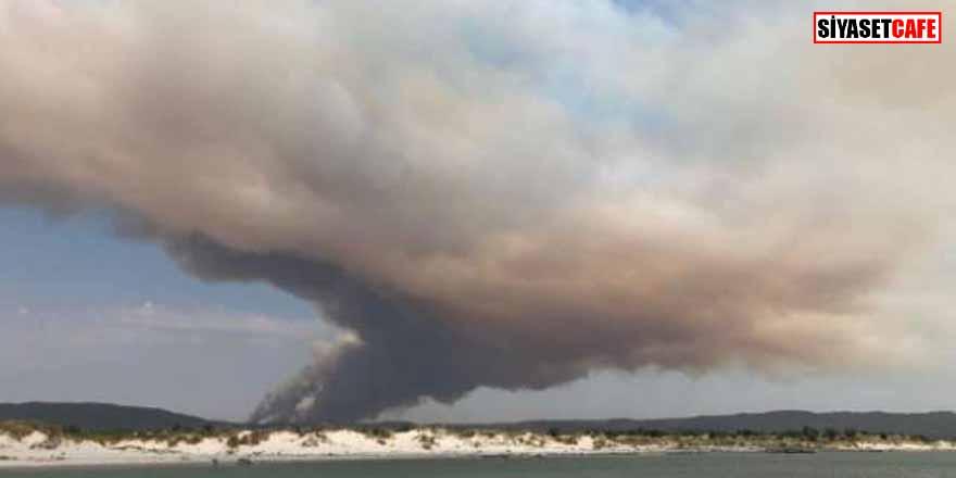 Son dakika: Boğaz'da orman yangını