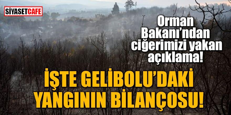 Orman Bakanı'ndan ciğerimizi yakan açıklama! İşte Gelibolu'daki yangının bilançosu