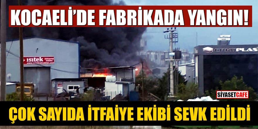 Kocaeli'de fabrikada yangın! Çok sayıda itfaiye ekibi sevk edildi