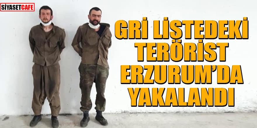 Gri listedeki terörist Erzurum'da yakalandı