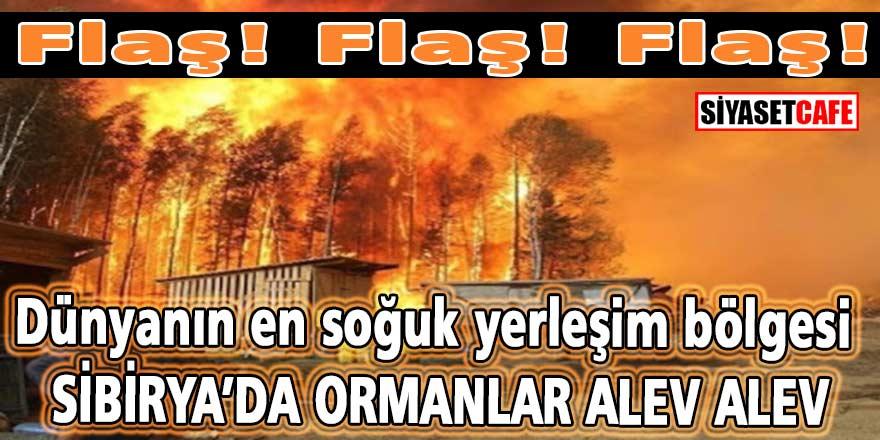 Flaş! Flaş! Flaş! Dünyanın en soğuk yerleşim bölgesinde orman yangınları söndürülemiyor