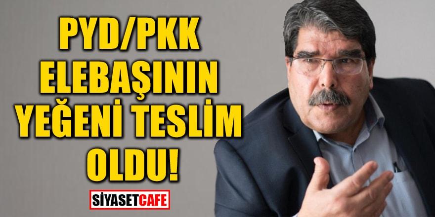 PYD/PKK elebaşlarından Salih Müslüm'ün yeğeni teslim oldu