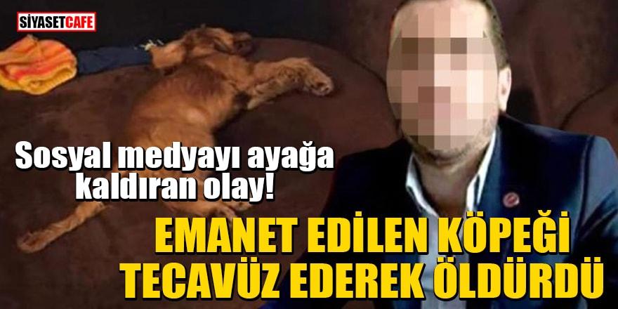 Sosyal medyayı ayağa kaldıran olay! Emanet köpeği tecavüz ederek öldürdü