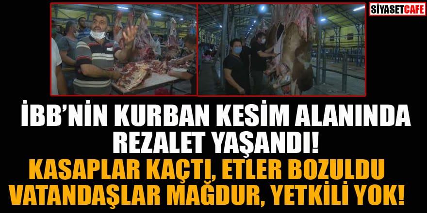 İBB'nin kurban kesim alanında rezalet! Kasaplar kaçtı, etler bozuldu!