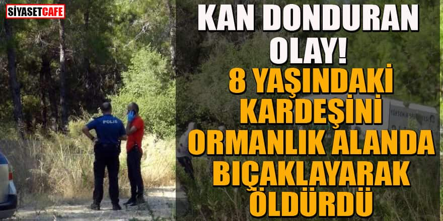 Antalya'da dehşet cinayet! Kardeşini ormanlık alanda bıçaklayarak öldürdü