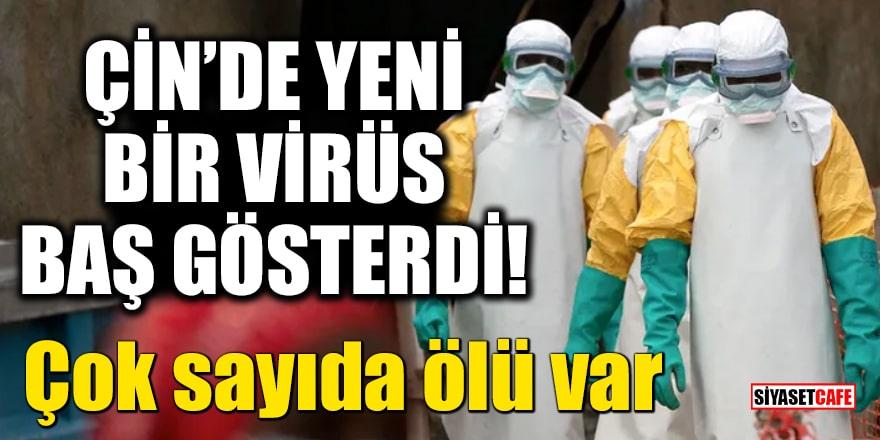 Koronanın yayıldığı Çin'de yeni bir virüs baş gösterdi!Çok sayıda ölü var