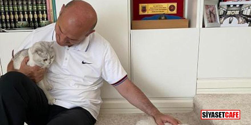 """Süleyman Soylu'dan kedili paylaşım: """"Aramızda kalsın Muazzam hamile"""""""