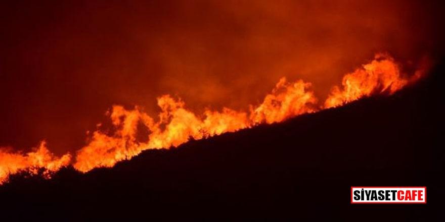 Çeşme'deki korkutan yangın kontrol altında