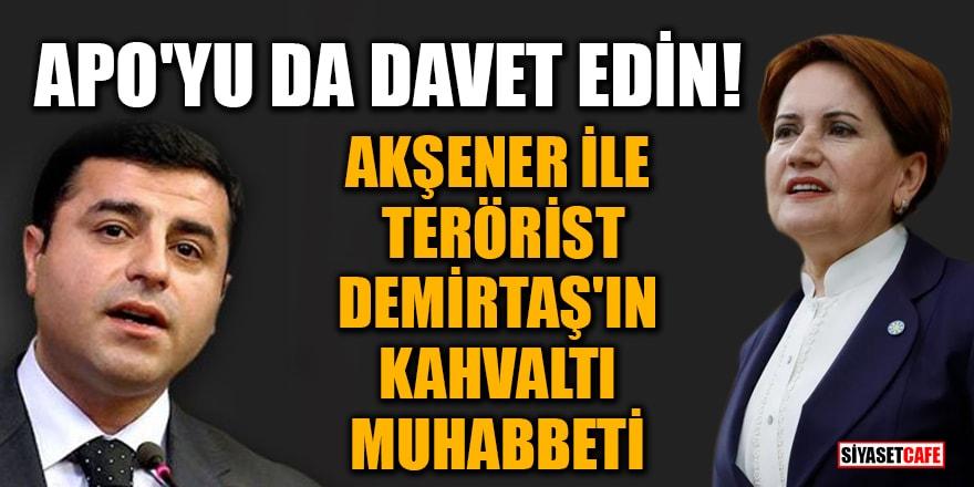 Akşener ile terörist Demirtaş'ın kahvaltı muhabbeti!