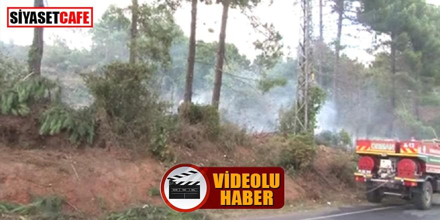Beykoz'da çıkan yangın söndürüldü