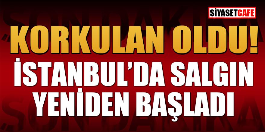 Çapa Tıp Fakültesi Dekanı Tükek: İstanbul'da salgın yeniden başladı