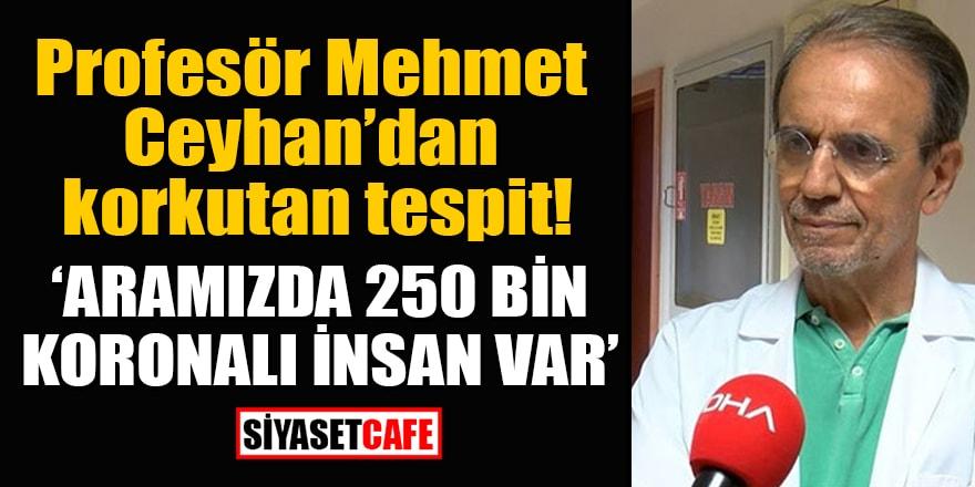 Profesör Mehmet Ceyhan'dan korkutan tespit: Aramızda 250 bin koronalı insan var