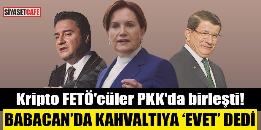 PKK'lı Demirtaş'ın kahvaltı sofrasına Ali Babacan'da katılacak