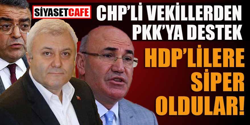 CHP'li vekillerden PKK'ya destek: HDP'lilere siper oldular
