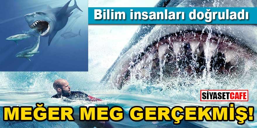"""Bilim insanları doğruladı: """"Meğer Jaws ve The Meg gerçekten o kadar büyükmüş"""""""