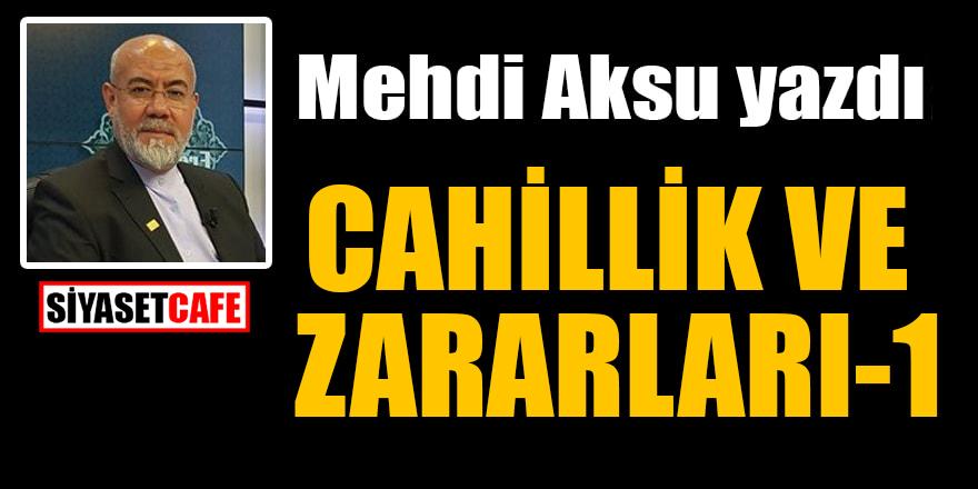 Mehdi Aksu yazdı: Cahillik ve zararları-1