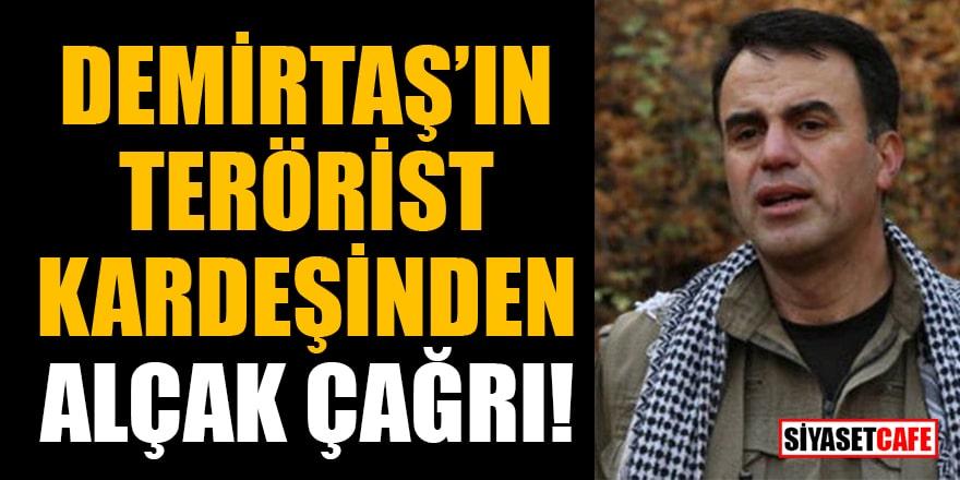 Demirtaş'ın terörist kardeşinden alçak çağrı!