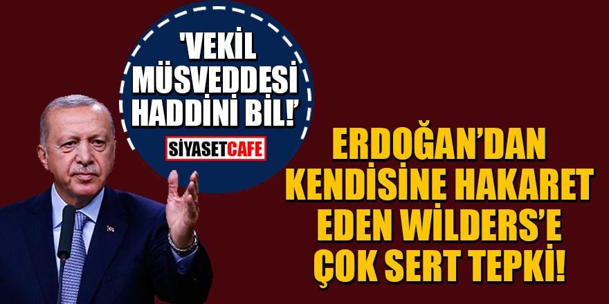Erdoğan'dan kendisine hakaret eden Wilders'e çok sert tepki! 'Vekil müsveddesi haddini bil!'