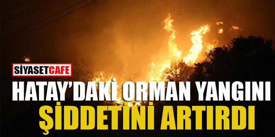 Hatay'daki orman yangını şiddetini artırdı