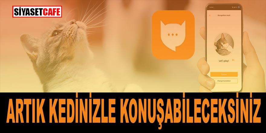 Evde kedi besleyenler dikkat! Artık kediniz ile konuşabileceksiniz