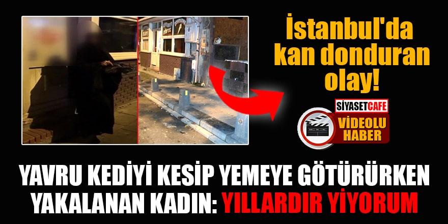 İstanbul'da kan donduran olay! Yavru kediyi kesip yemeye götürürken yakalanan kadın: Yıllardır yiyorum