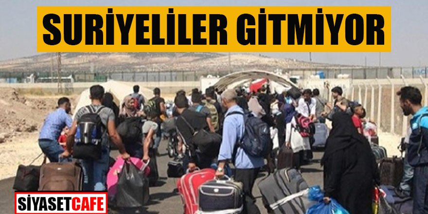 Araştırmadan çıkan sonuç: Suriyeliler gitmiyor
