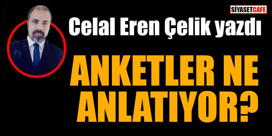 Celal Eren Çelik yazdı: Anketler ne anlatıyor?