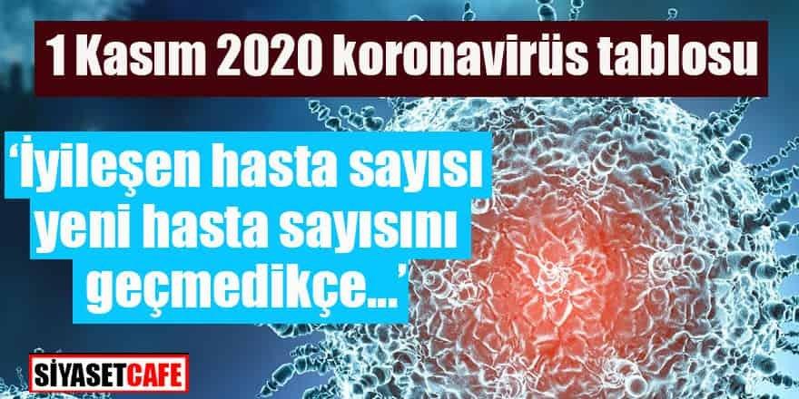 1 Aralık 2020 koronavirüs tablosu açıklandı