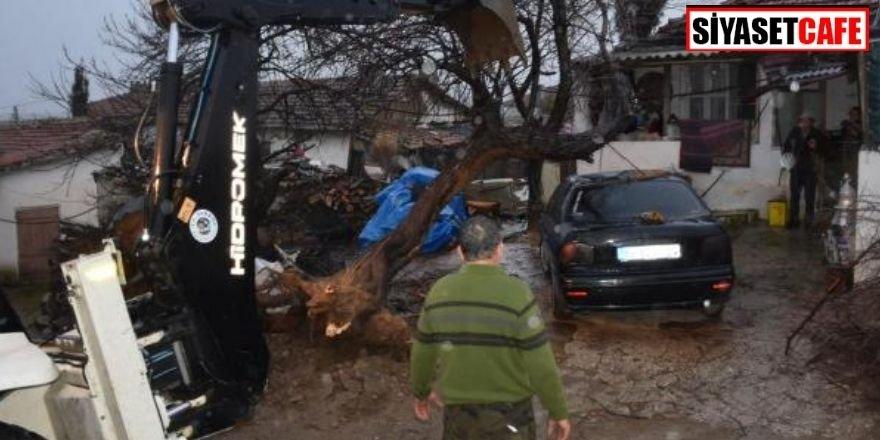 Fırtına ağaçları devirdi, çatıları uçurdu