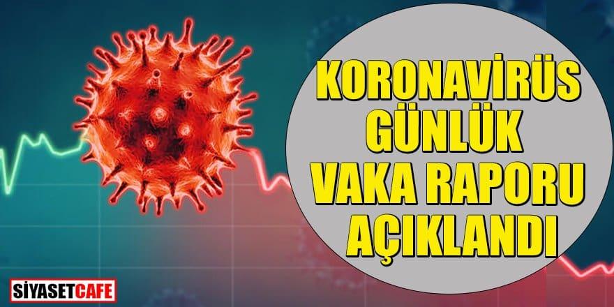 17 Ocak koronavirüs günlük vaka raporu