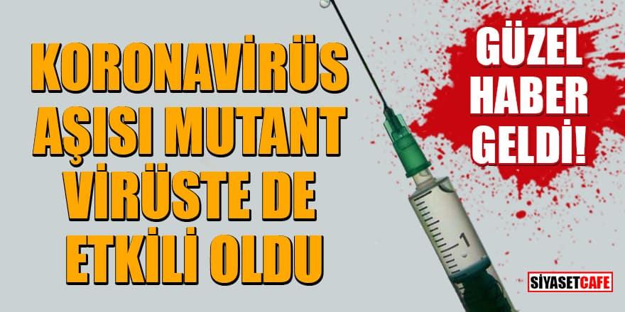 Güzel haber geldi! Koronavirüs aşısı mutant virüste de etkili oldu