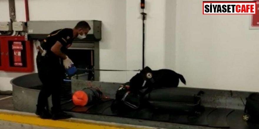 Havalimanında uyuşturucu operasyonu: 24 kilo kokain