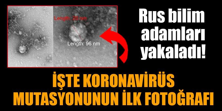 Rus bilim adamları yakaladı! İşte koronavirüs mutasyonunun ilk fotoğrafı